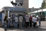 Москва заменила коров роботами. В Москве появились оригинальные вендинговые автоматы по продаже молока